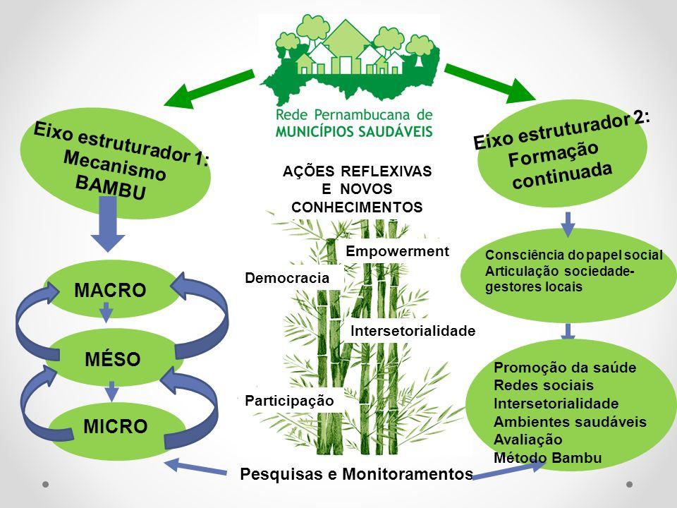 Pesquisas e Monitoramentos Eixo estruturador 1: Mecanismo BAMBU MACRO MÉSO MICRO Promoção da saúde Redes sociais Intersetorialidade Ambientes saudávei