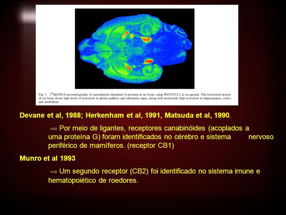 Devane et al, 1988; Herkenham et al, 1991, Matsuda et al, 1990. Por meio de ligantes, receptores canabinóides (acoplados a uma proteína G) foram ident