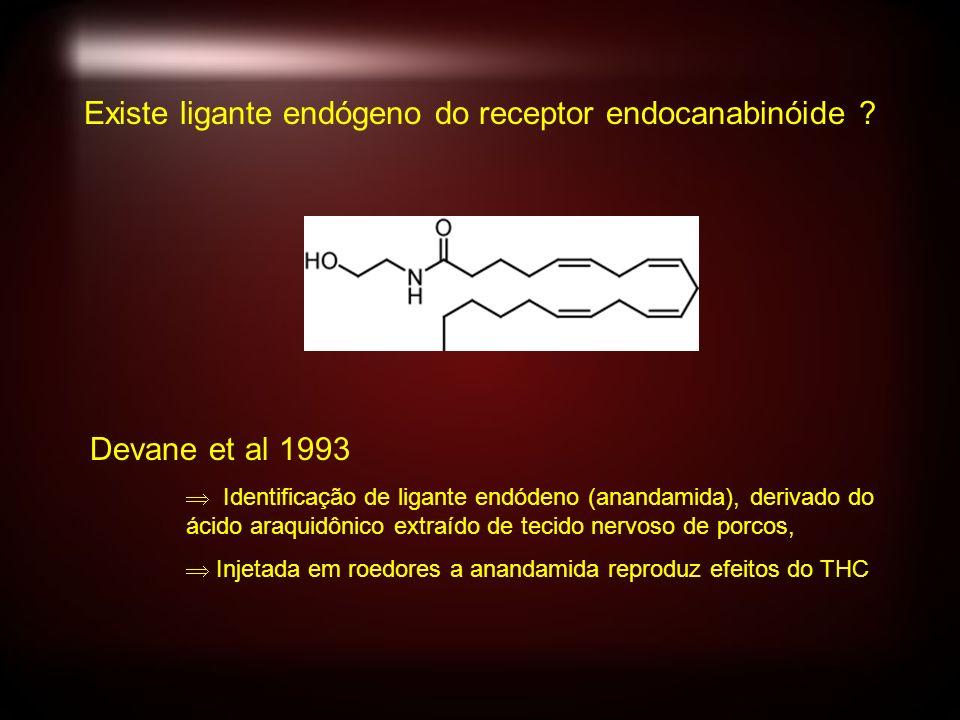 Devane et al 1993 Identificação de ligante endódeno (anandamida), derivado do ácido araquidônico extraído de tecido nervoso de porcos, Injetada em roedores a anandamida reproduz efeitos do THC Existe ligante endógeno do receptor endocanabinóide