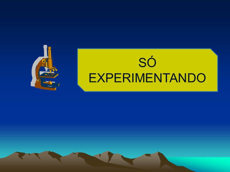 SÓ EXPERIMENTANDO