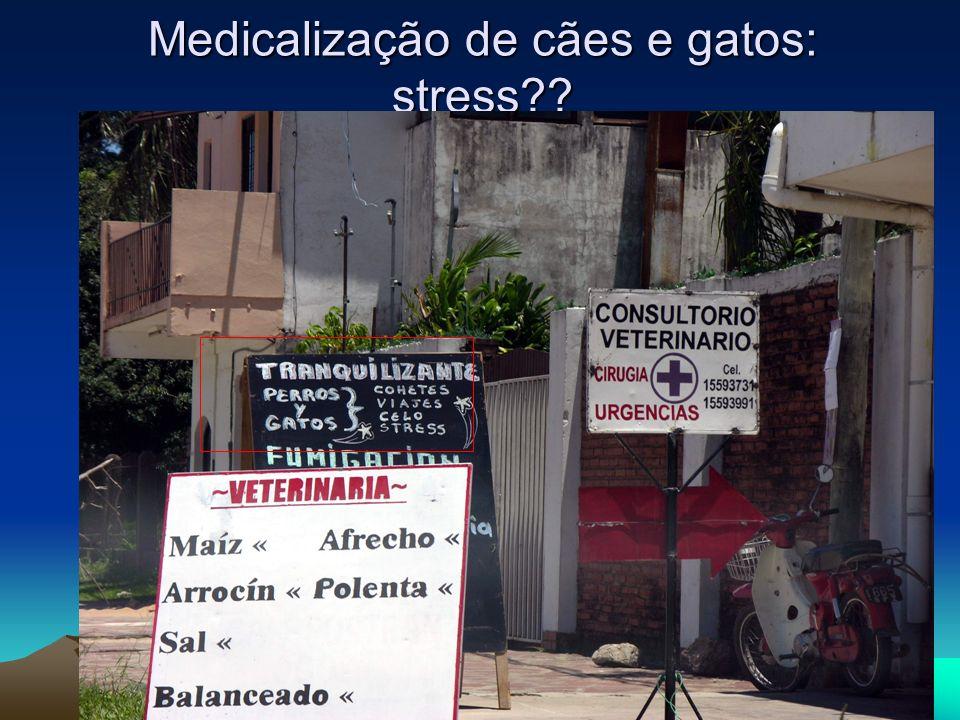 Medicalização de cães e gatos: stress??