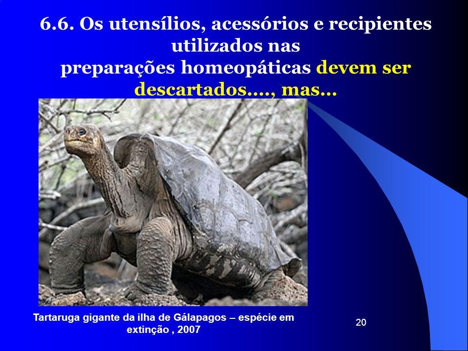 20 6.6. Os utensílios, acessórios e recipientes utilizados nas preparações homeopáticas devem ser descartados...., mas... Tartaruga gigante da ilha de