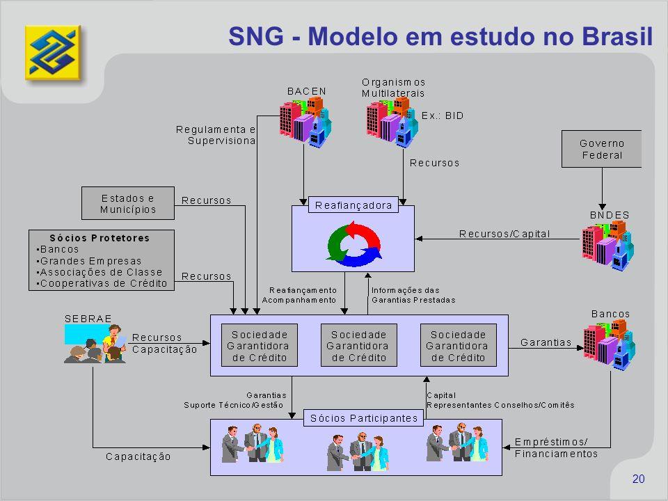 20 SNG - Modelo em estudo no Brasil