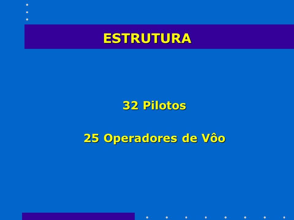ESTRUTURA 32 Pilotos 25 Operadores de Vôo