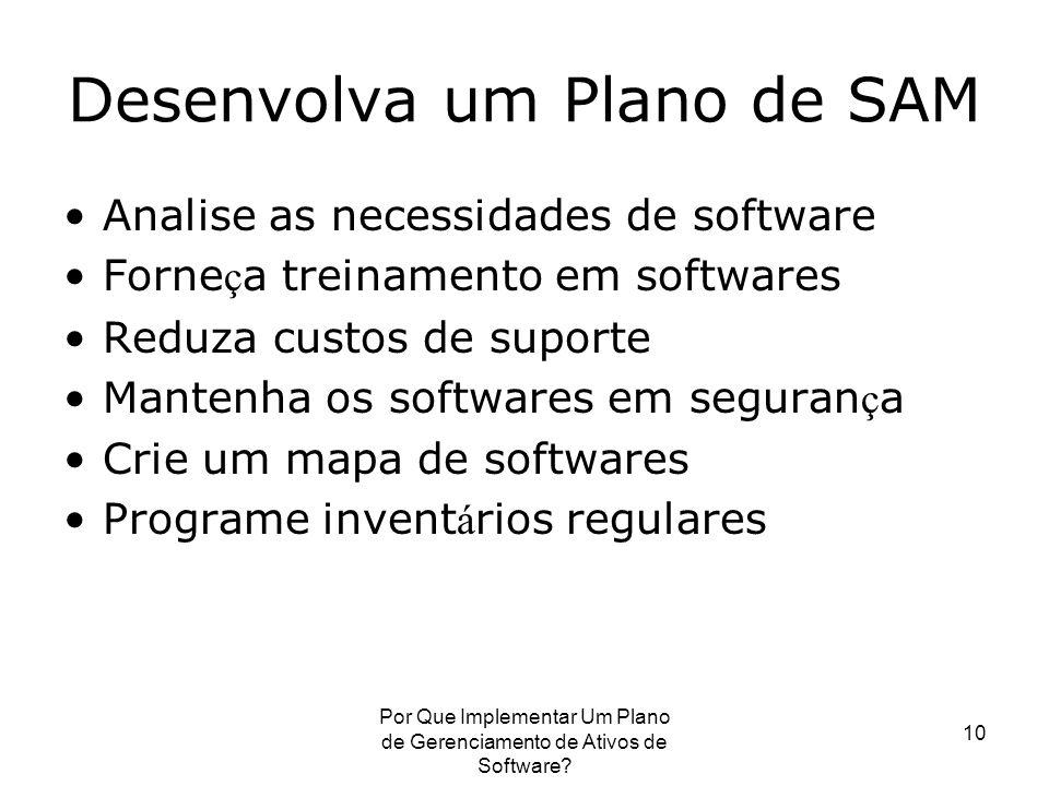 Por Que Implementar Um Plano de Gerenciamento de Ativos de Software? 10 Desenvolva um Plano de SAM Analise as necessidades de software Forne ç a trein