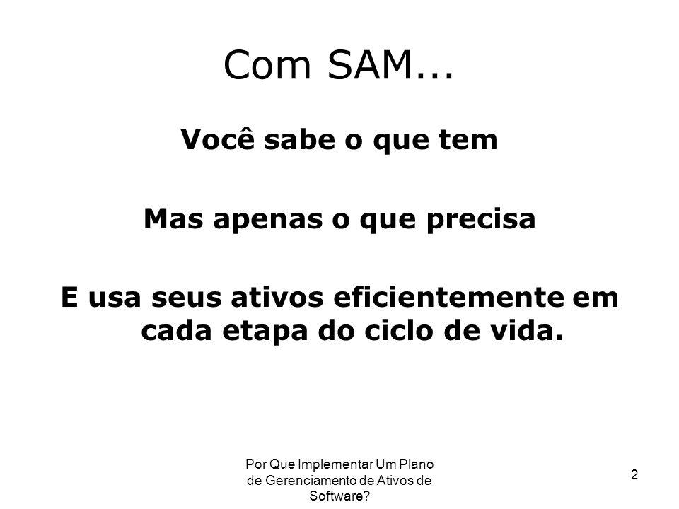2 Com SAM... Você sabe o que tem Mas apenas o que precisa E usa seus ativos eficientemente em cada etapa do ciclo de vida.