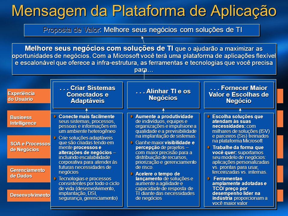 Experiência do Usuário BusinessIntelligence SOA e Processos de Negócios Gerenciamento de Dados Desenvolvimento Mensagem da Plataforma de Aplicação Melhore seus negócios com soluções de TI que o ajudarão a maximizar as oportunidades de negócios.