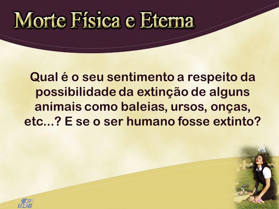 Qual é o seu sentimento a respeito da possibilidade da extinção de alguns animais como baleias, ursos, onças, etc...? E se o ser humano fosse extinto?