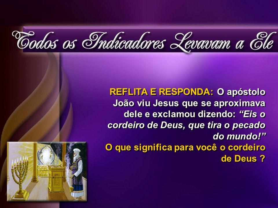 REFLITA E RESPONDA: O apóstolo João viu Jesus que se aproximava dele e exclamou dizendo: Eis o cordeiro de Deus, que tira o pecado do mundo.