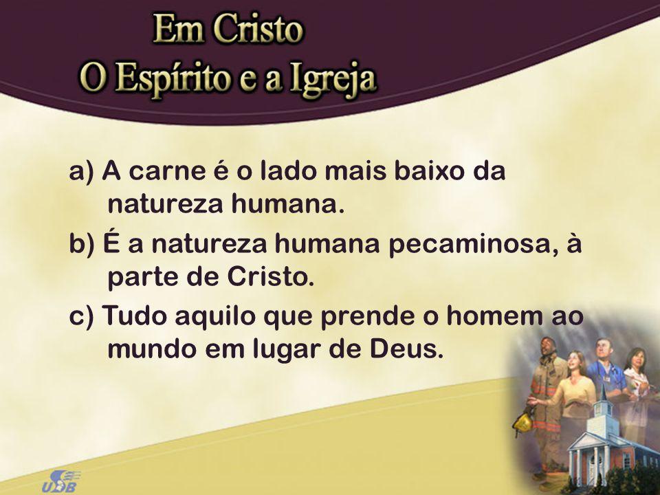 a) A carne é o lado mais baixo da natureza humana. b) É a natureza humana pecaminosa, à parte de Cristo. c) Tudo aquilo que prende o homem ao mundo em