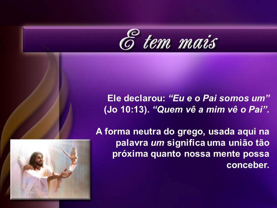 Ele declarou: Eu e o Pai somos um (Jo 10:13).Quem vê a mim vê o Pai.