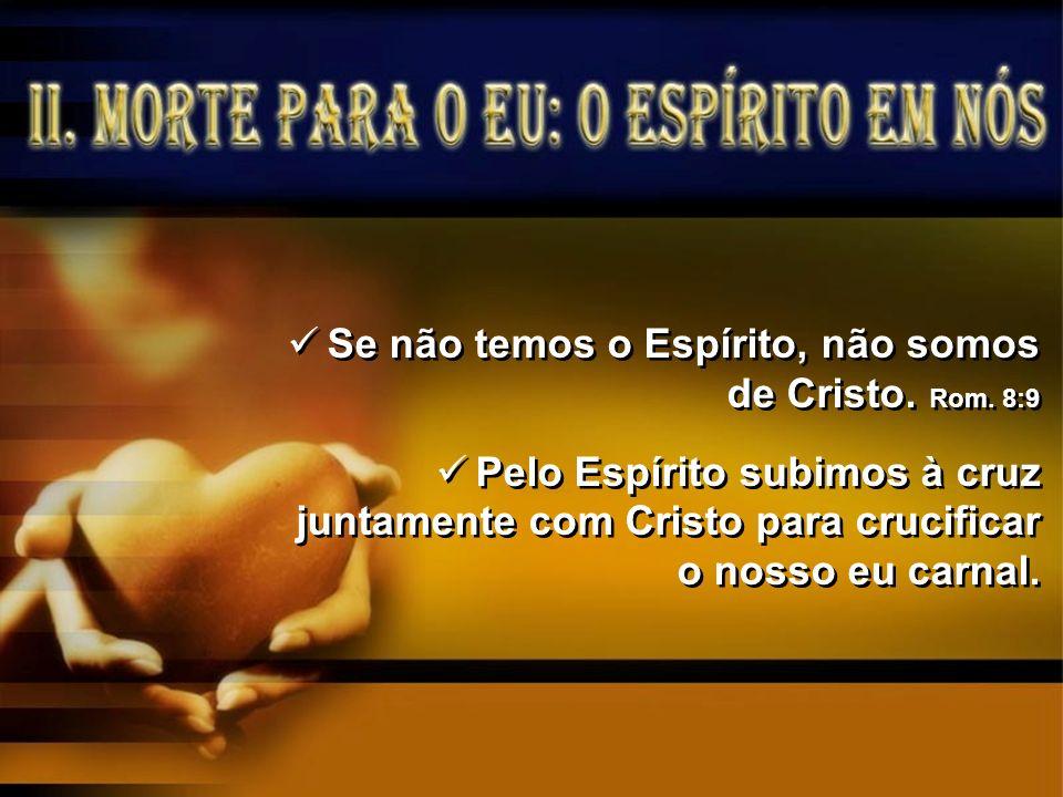 Se não temos o Espírito, não somos de Cristo. Rom. 8:9 Pelo Espírito subimos à cruz juntamente com Cristo para crucificar o nosso eu carnal. Se não te