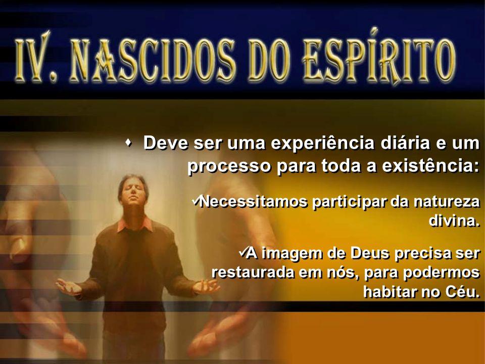 Deve ser uma experiência diária e um processo para toda a existência: Necessitamos participar da natureza divina. A imagem de Deus precisa ser restaur
