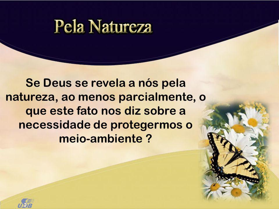 a)Os fenômenos da natureza revelam a majestade e grandeza de Deus – Sl 8, 104.