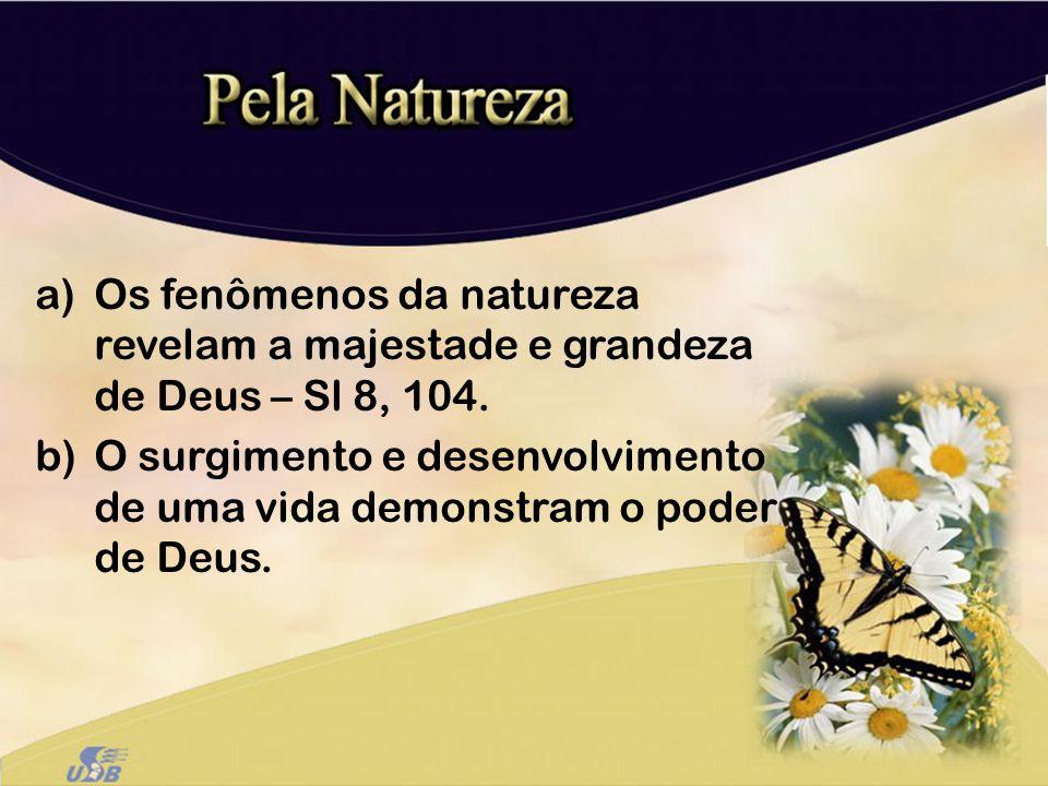 a)Os fenômenos da natureza revelam a majestade e grandeza de Deus – Sl 8, 104. b)O surgimento e desenvolvimento de uma vida demonstram o poder de Deus