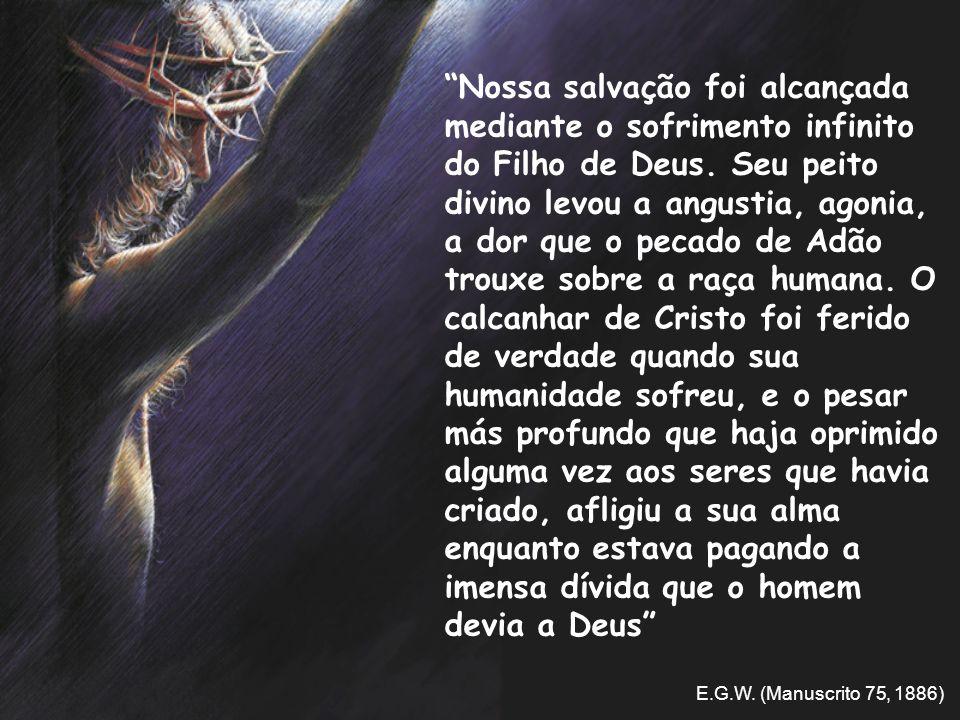 Nossa salvação foi alcançada mediante o sofrimento infinito do Filho de Deus. Seu peito divino levou a angustia, agonia, a dor que o pecado de Adão tr