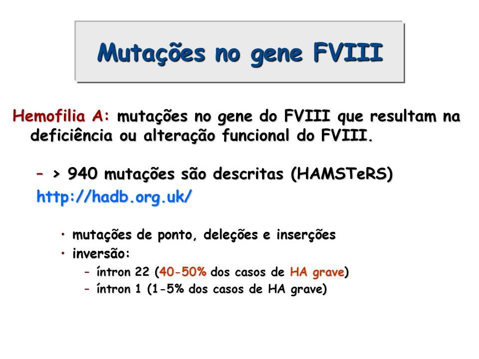 Mutações no gene FVIII Hemofilia A: mutações no gene do FVIII que resultam na deficiência ou alteração funcional do FVIII. –> 940 mutações são descrit