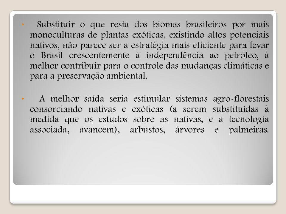 Substituir o que resta dos biomas brasileiros por mais monoculturas de plantas exóticas, existindo altos potenciais nativos, não parece ser a estratég