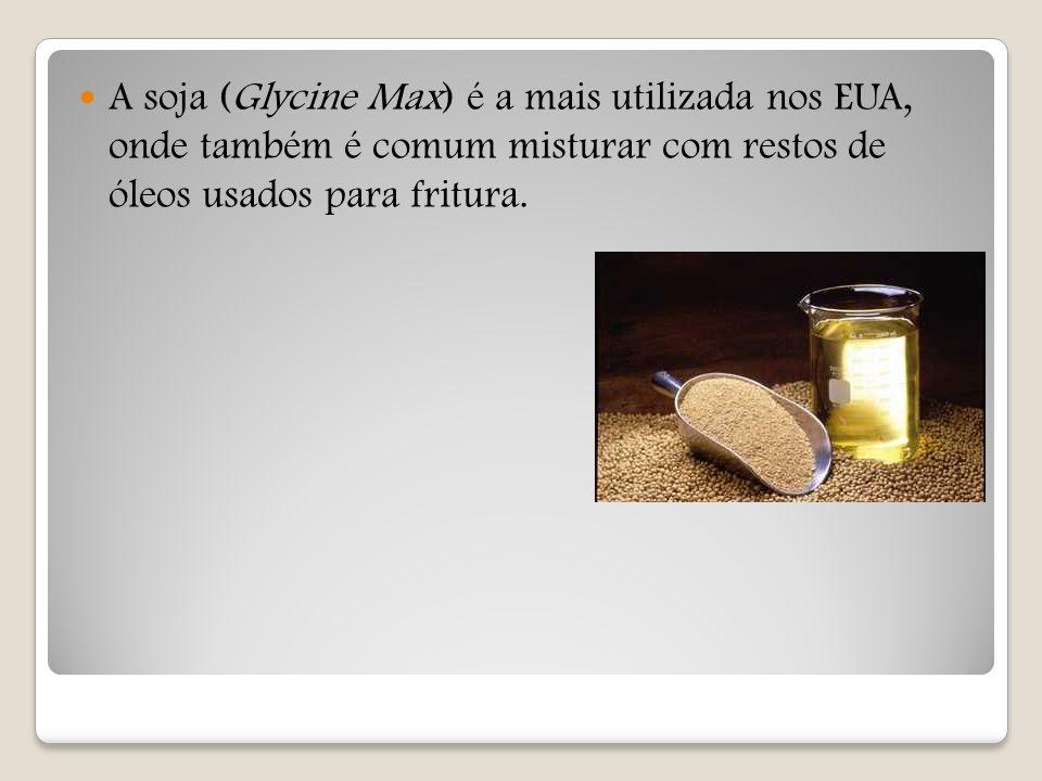 A soja (Glycine Max) é a mais utilizada nos EUA, onde também é comum misturar com restos de óleos usados para fritura.