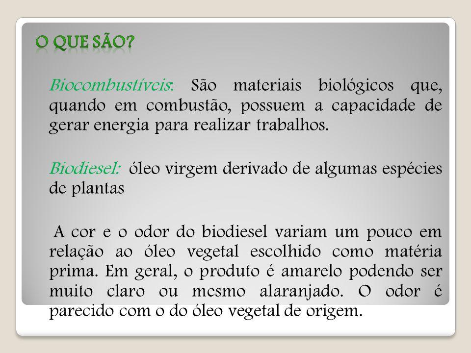 Substituir o que resta dos biomas brasileiros por mais monoculturas de plantas exóticas, existindo altos potenciais nativos, não parece ser a estratégia mais eficiente para levar o Brasil crescentemente à independência ao petróleo, à melhor contribuir para o controle das mudanças climáticas e para a preservação ambiental.