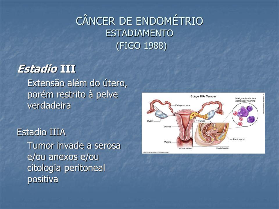 CÂNCER DE ENDOMÉTRIO ESTADIAMENTO (FIGO 1988) Estadio III Extensão além do útero, porém restrito à pelve verdadeira Estadio IIIA Tumor invade a serosa
