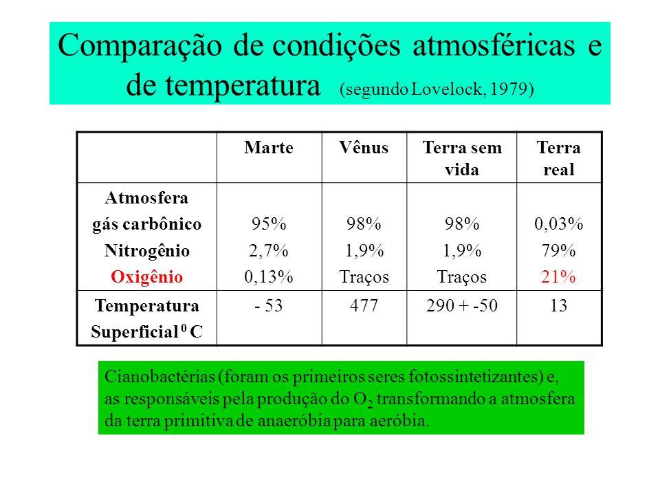 Comparação de condições atmosféricas e de temperatura (segundo Lovelock, 1979) MarteVênusTerra sem vida Terra real Atmosfera gás carbônico Nitrogênio