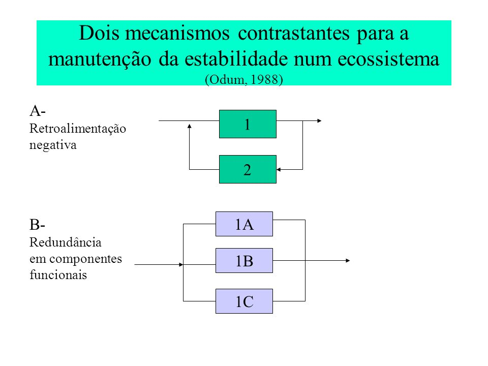 Dois mecanismos contrastantes para a manutenção da estabilidade num ecossistema (Odum, 1988) 1 2 A- Retroalimentação negativa 1A 1B 1C B- Redundância