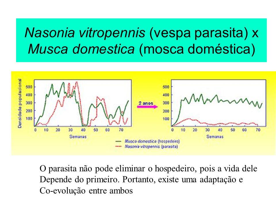 Nasonia vitropennis (vespa parasita) x Musca domestica (mosca doméstica) O parasita não pode eliminar o hospedeiro, pois a vida dele Depende do primei