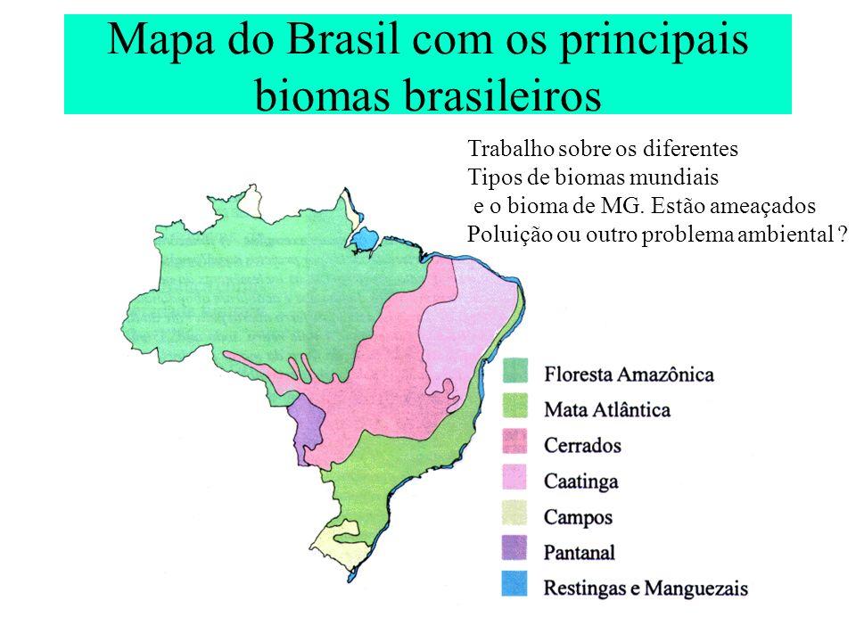 Mapa do Brasil com os principais biomas brasileiros Trabalho sobre os diferentes Tipos de biomas mundiais e o bioma de MG. Estão ameaçados Poluição ou