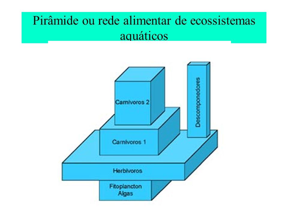 Comparação de densidade e biomassa dos organismos em ecossistemas aquáticos e terrestres de produtividade moderada comparável Componente ecológico Lago de águas abertas Conjunto, N 0 /m 2, P.seco (g/m 2 ) Prado ou campo abandonado Conjunto, N 0 /m 2, P.seco (g/m 2 ) ProdutoresAlgas fitoplanctônicas, 10 8 -10 10, 5,0 Angiospermas, herbáceas (gramíneas), 10 2 -10 3, 500,0 Consumidores na camada autotrófica Crustáceos e rotíferos zooplanctônicos, 10 5 -10 7, 0,5 Insetos e aranhas, 10 2 -10 3, 1,0 Consumidores na camada heterotrófica Insetos, moluscos e crustáceos, 10 5 -10 6, 4,0 Artrópodos, anelídeos e nematodos do solo, 10 5 -10 6, 4,0 Grandes consumidores móveis Peixes, 0,1- 0,5, 15,0Aves e mamíferos, 0,01- 0,03, 0,3- 15 Microrganismos consumidores (saprófagos) Bactérias e fungos, 10 13 -10 14, 1- 10,0 Bactérias e fungos, 10 14 - 10 15, 10- 100,0