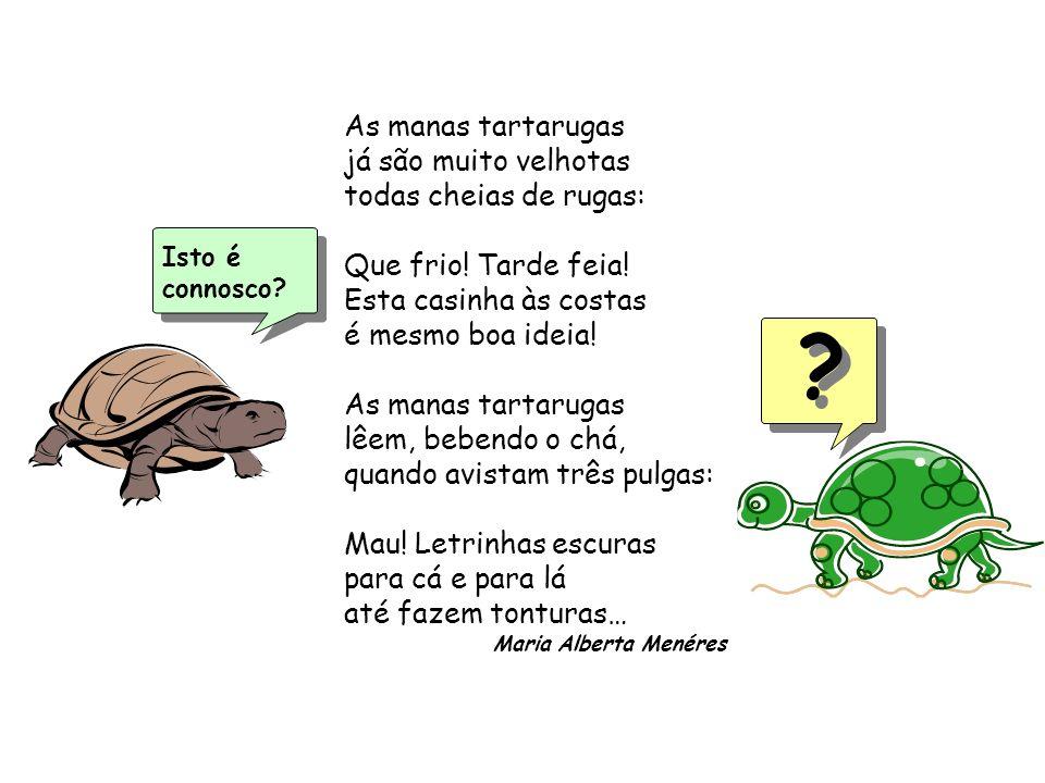 Isto é connosco? As manas tartarugas já são muito velhotas todas cheias de rugas: Que frio! Tarde feia! Esta casinha às costas é mesmo boa ideia! As m