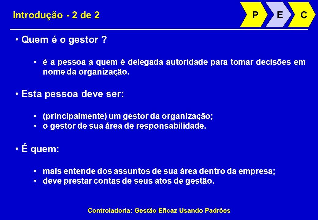 Controladoria: Gestão Eficaz Usando Padrões Introdução - 2 de 2 Quem é o gestor ? é a pessoa a quem é delegada autoridade para tomar decisões em nome