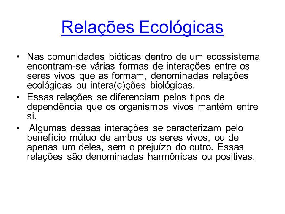 Relações Ecológicas Nas comunidades bióticas dentro de um ecossistema encontram-se várias formas de interações entre os seres vivos que as formam, den