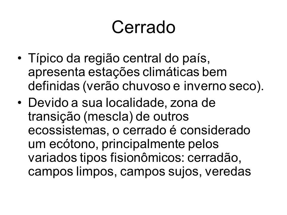 Cerrado Típico da região central do país, apresenta estações climáticas bem definidas (verão chuvoso e inverno seco). Devido a sua localidade, zona de