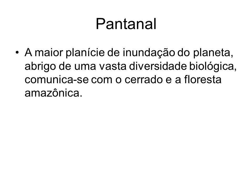Pantanal A maior planície de inundação do planeta, abrigo de uma vasta diversidade biológica, comunica-se com o cerrado e a floresta amazônica.