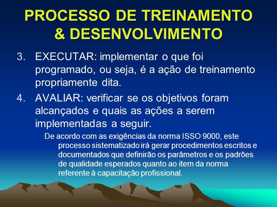 PROCESSO DE TREINAMENTO & DESENVOLVIMENTO 3.EXECUTAR: implementar o que foi programado, ou seja, é a ação de treinamento propriamente dita. 4.AVALIAR: