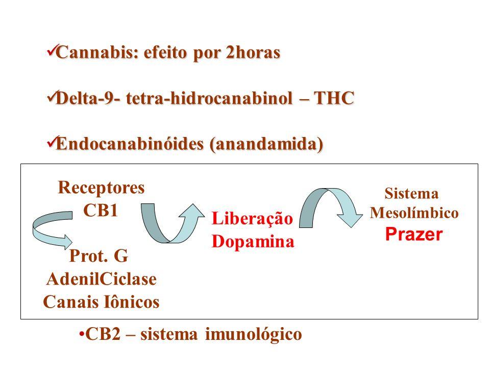 Cannabis: efeito por 2horas Cannabis: efeito por 2horas Delta-9- tetra-hidrocanabinol – THC Delta-9- tetra-hidrocanabinol – THC Endocanabinóides (anan