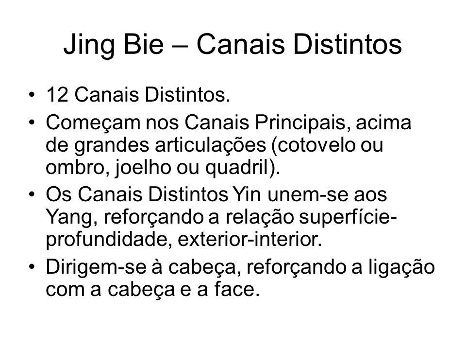 Jing Bie – Canais Distintos 12 Canais Distintos. Começam nos Canais Principais, acima de grandes articulações (cotovelo ou ombro, joelho ou quadril).