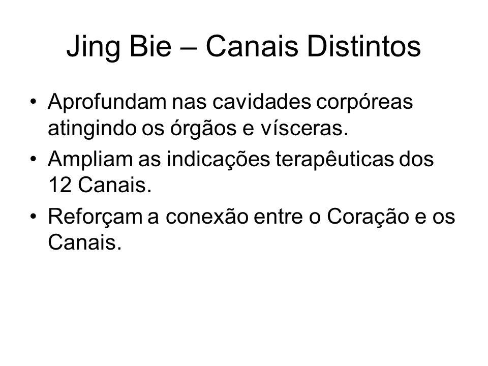 Jing Bie – Canais Distintos Aprofundam nas cavidades corpóreas atingindo os órgãos e vísceras. Ampliam as indicações terapêuticas dos 12 Canais. Refor