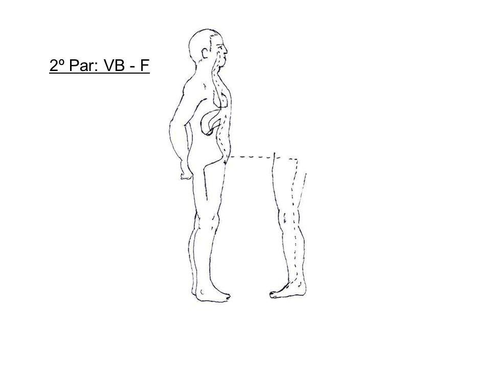 2º Par: VB - F