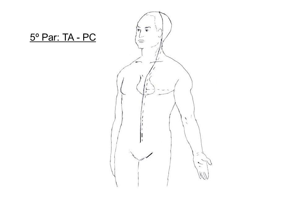 5º Par: TA - PC