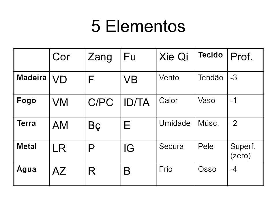 5 Elementos CorZangFuXie Qi Tecido Prof. Madeira VDFVB VentoTendão-3 Fogo VMC/PCID/TA CalorVaso Terra AMBçE UmidadeMúsc.-2 Metal LRPIG SecuraPeleSuper
