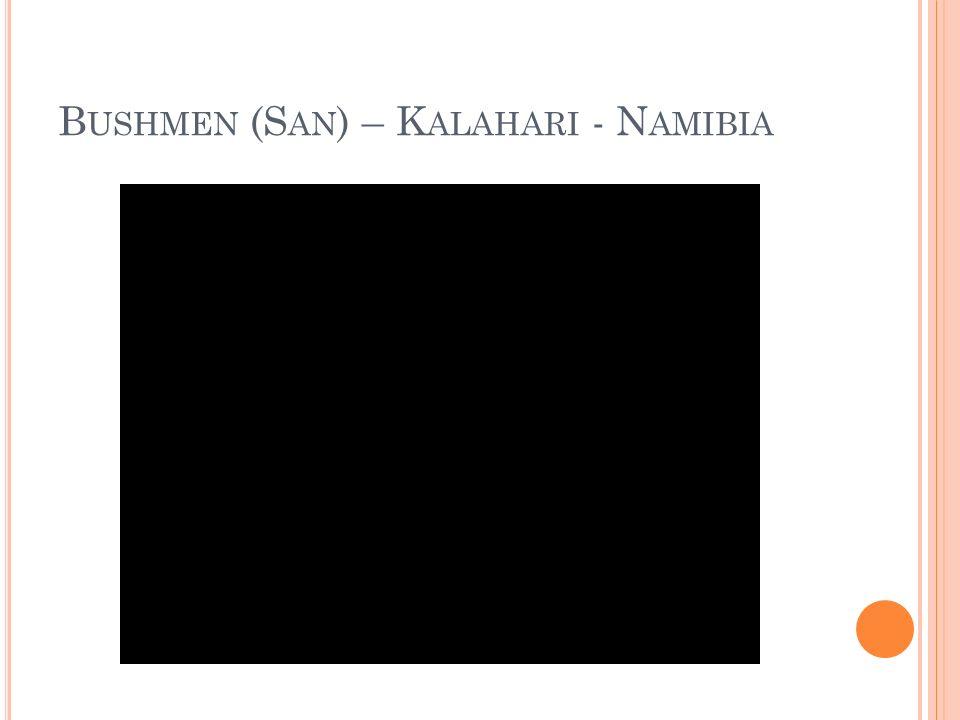 B USHMEN (S AN ) – K ALAHARI - N AMIBIA