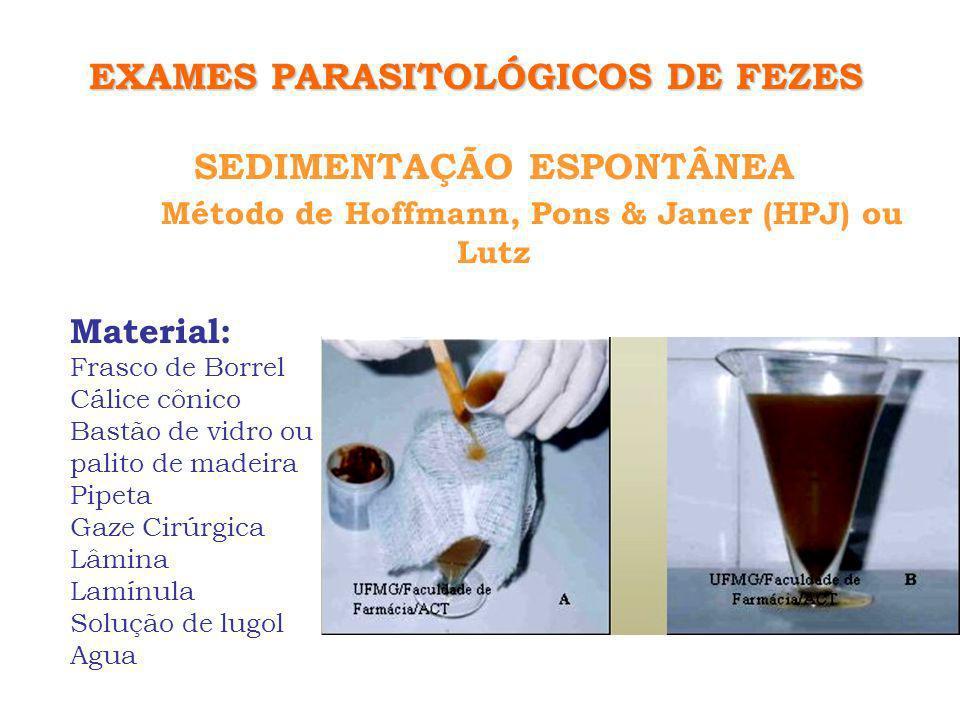 SEDIMENTAÇÃO ESPONTÂNEA Método de Hoffmann, Pons & Janer (HPJ) ou Lutz FUNDAMENTO: Ovos e cistos tendem a sedimentar na água, que auxilia na diminuição de contaminação bacteriana, muco e gordura.