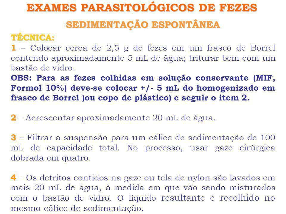 SEDIMENTAÇÃO ESPONTÂNEA EXAMES PARASITOLÓGICOS DE FEZES TÉCNICA: 5 5 – Deixar a suspensão do cálice em repouso por 1 a 24 horas.