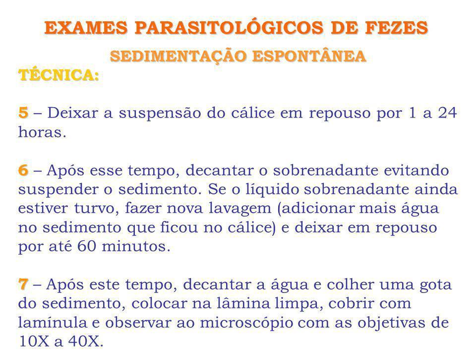 SEDIMENTAÇÃO ESPONTÂNEA EXAMES PARASITOLÓGICOS DE FEZES