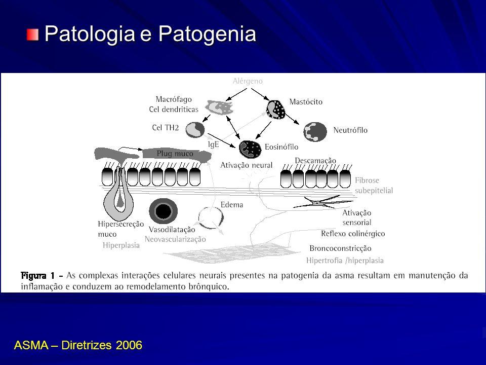 Tratamento de manutenção –Antileucotrienos Montelucaste (Singulair®) / Zafirlucaste Uso: substitutivo aos LABA ou adicional aos LABA-CI Uso: sibilância recorrente após bronquiolite viaral aguda em lactentes –Omalizumabe (Anti IgE) >12 anos com asma alérgica de difícil controle Uso: 2/2 semanas ou 4/4 semanas, SC Peso x nível IgE sérico total ASMA – Diretrizes 2006