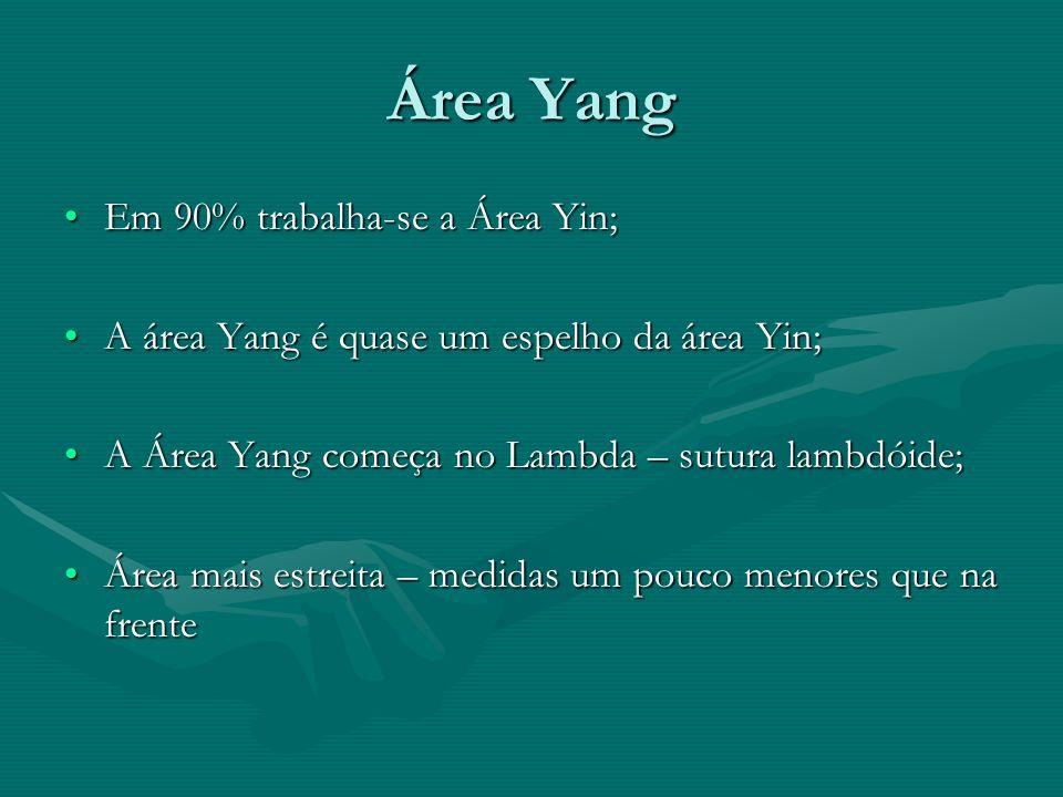 Área Yang Em 90% trabalha-se a Área Yin;Em 90% trabalha-se a Área Yin; A área Yang é quase um espelho da área Yin;A área Yang é quase um espelho da ár