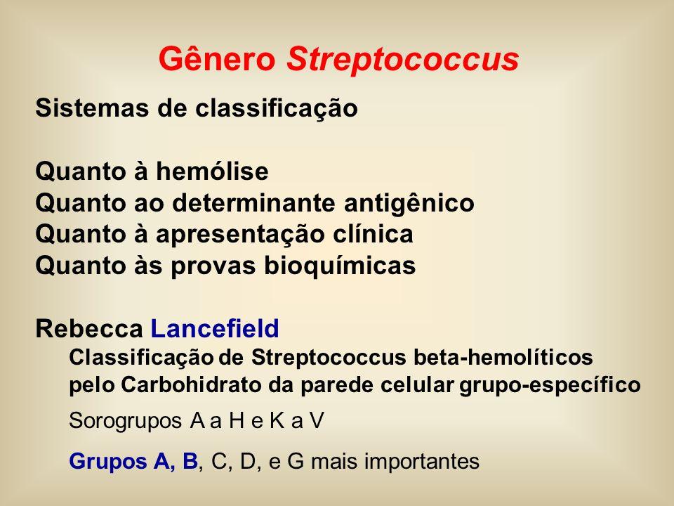 Important nosocomial pathogen Vancomycin resistant Enterococcus (VRE)