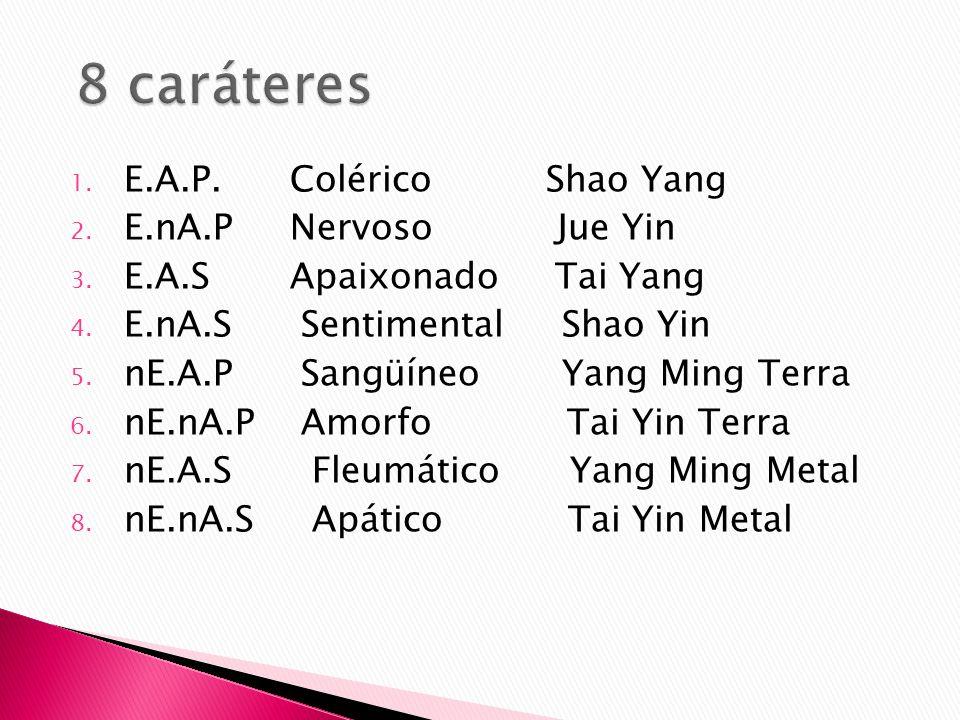 1. E.A.P. Colérico Shao Yang 2. E.nA.P Nervoso Jue Yin 3. E.A.S Apaixonado Tai Yang 4. E.nA.S Sentimental Shao Yin 5. nE.A.P Sangüíneo Yang Ming Terra